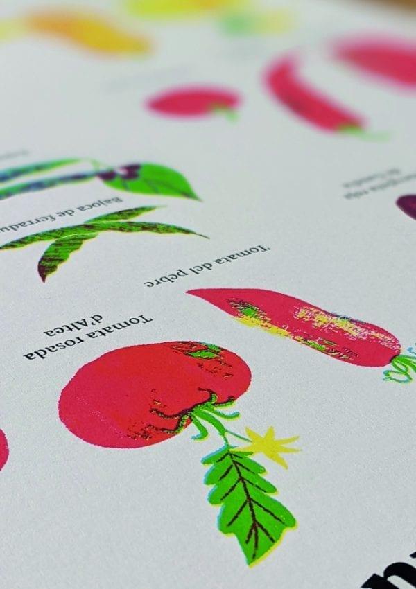Serigrafia 4 Serigrafia 'Varietats tradicionals valencianes'